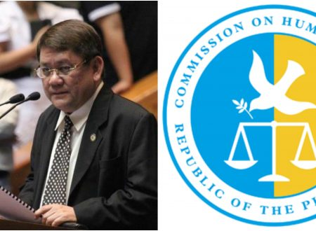 """Cebu City Mayor on CHR budget issue: """"Chairmanship of CHR should be an elected position"""""""
