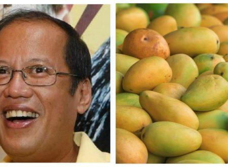 Dating Pangulong Aquino, ikinumpara sa mangga ang desisyon ng Korte Suprema kay Sereno
